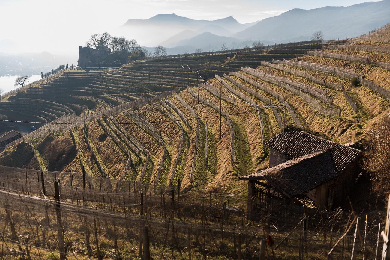Ticino Inverno Morcote