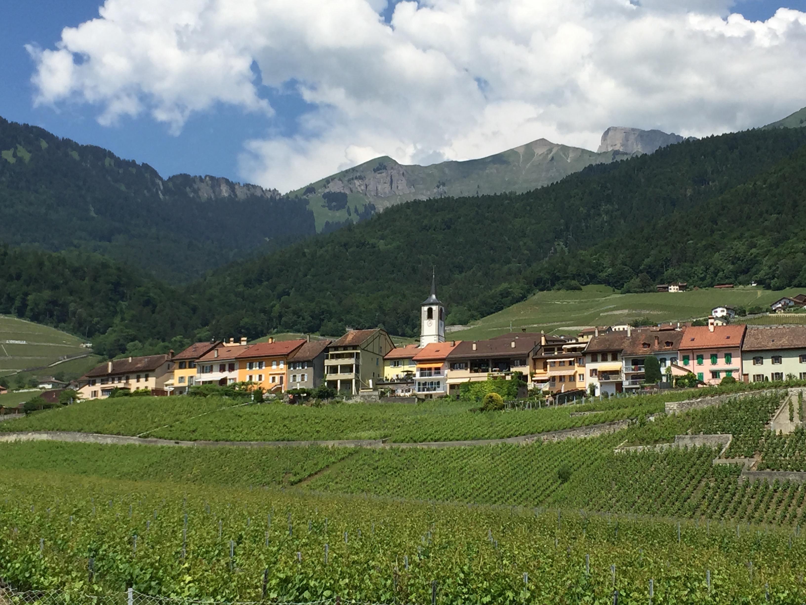 Vaud Chablais Été Yvorne