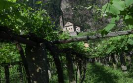 Ticino Primavera