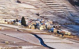 Vaud Lavaux Hiver Epesses Calamin