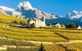 Swiss Wine, Valais, Bourg