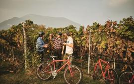 Bike'n'Wine Mendrisiotto Tessin@Switzerland Tourism Gilgio Pasqua