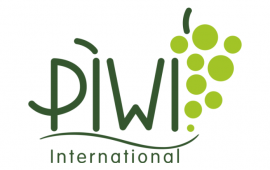 piwi international weinpreis