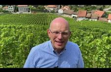 Introduction to the new Swiss Wine UK video series by Simon Hardy DipWSET