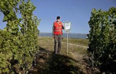 Vin Suisse Geneve Mise a ban