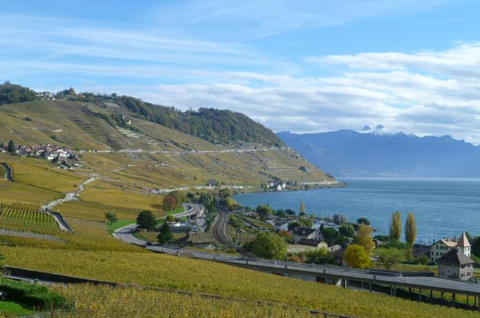 Swisswine Vin Suisse Vaud Lavaux