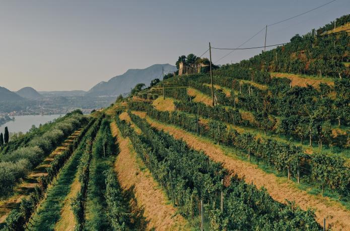 Ticino - Gaby Gianini