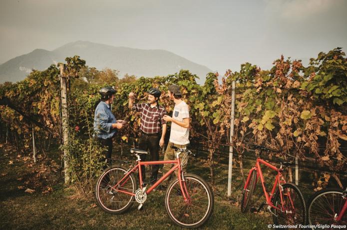 Bike'n'Wine Mendrisiotto Tessin @Switzerland Tourism Gilgio Pasqua
